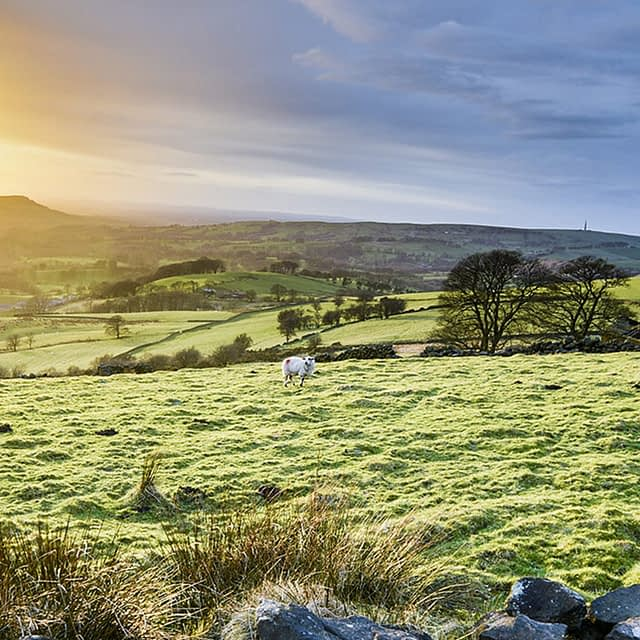 Scenic winter walks in the Peak District